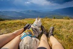 Ноги горы путешественника сидя в собаке перемещения стоковые изображения