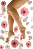 ноги довольно Стоковые Изображения