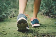 Ноги девушки битника идя в лес Стоковое Фото