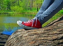Ноги девушки сидя на стволе дерева Стоковые Изображения