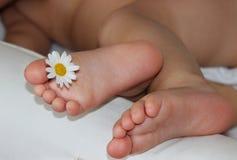Ноги детей маленькие Стоковые Изображения RF