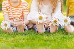 Ноги детей с маргариткой цветут на зеленой траве Стоковые Изображения RF