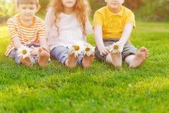 Ноги детей с маргариткой цветут на зеленой траве Стоковое фото RF