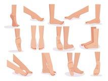 ноги женские иллюстрация штока