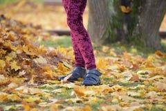 Ноги женщины на листьях осени в лесе Стоковое фото RF