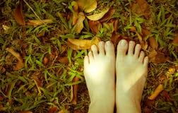 Ноги женщины на траве сбор винограда типа лилии иллюстрации красный Стоковое Фото