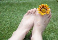 Ноги женщины на траве с цветком Стоковое Изображение