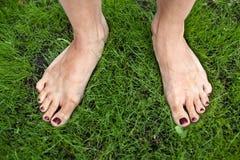 Ноги женщины на траве. Стоковое Изображение RF