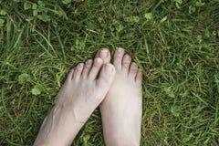 Ноги женщины на траве Стоковая Фотография