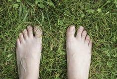 Ноги женщины на траве Стоковые Фото