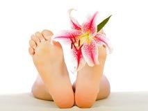 Очистьте ноги женщины стоковое фото