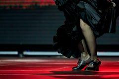 Ноги женщины танцуют юбка и ботинки фламенко черные для печати Стоковая Фотография