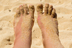 ноги женщины Стоковые Изображения