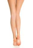 Красивейшие ноги женщин Стоковое Изображение