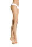 Красивейшие ноги женщин Стоковое фото RF