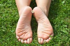 ноги женщин s стоковая фотография
