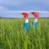 ноги зеленого цвета травы Стоковая Фотография RF