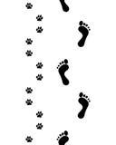 Ноги и лапки, безшовные Стоковая Фотография