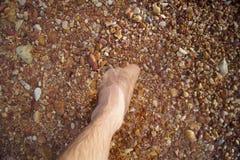 Ноги и ноги потонули в камне красного цвета моря Стоковые Изображения RF
