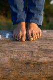 Ноги красивой девушки на дереве с pedicure Стоковое Изображение