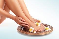 Ноги красивых женщин стоковая фотография rf