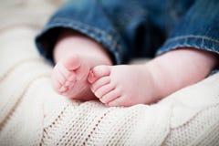 ноги младенца newborn Стоковое фото RF