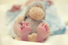 ноги младенца Стоковое Фото
