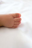 ноги младенца близкие вверх стоковые изображения