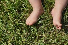 Ноги младенца на траве Стоковые Изображения