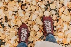 Ноги на желтом взгляде сверху листвы стоковая фотография