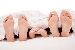 ноги семьи Стоковые Фото