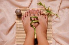 ноги спы Стоковые Фотографии RF