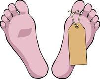 Ноги с биркой Стоковые Изображения RF