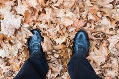 Ноги с ботинками на высушенных листьях дерева клена Стоковые Изображения
