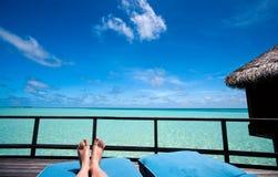 ноги тропические Стоковое Фото