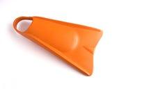 ноги утки Стоковое фото RF