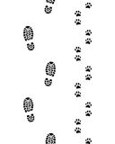 Ноги человека и лапки собаки Стоковое Фото