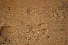 ноги шагов Стоковые Фото