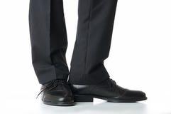 ноги Стоковое Изображение