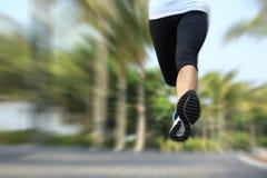 Ноги jogger фитнеса бежать на тропическом парке стоковая фотография