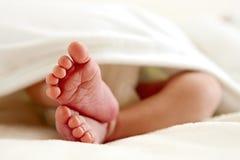 ноги newborn стоковое фото