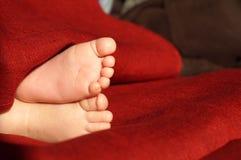 ноги s младенца Стоковая Фотография