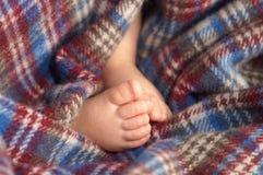 ноги s младенца Стоковое Изображение