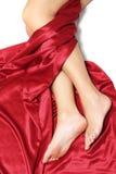 ноги silk Стоковое Фото