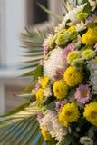 Ноготк, хризантема, Gerbera Стоковая Фотография