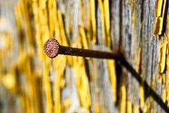 Ноготь в разрушанной деревянной стене стоковое фото