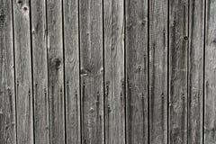 ногти доск Стоковые Фото