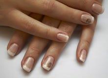 Ногти красивой женщины с французским маникюром на белом backgr Стоковые Изображения RF