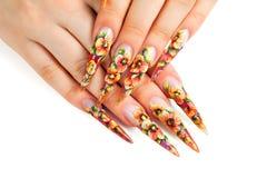 Ногти флористического дизайна красоты Стоковые Изображения