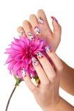 ногти цветка Стоковое фото RF